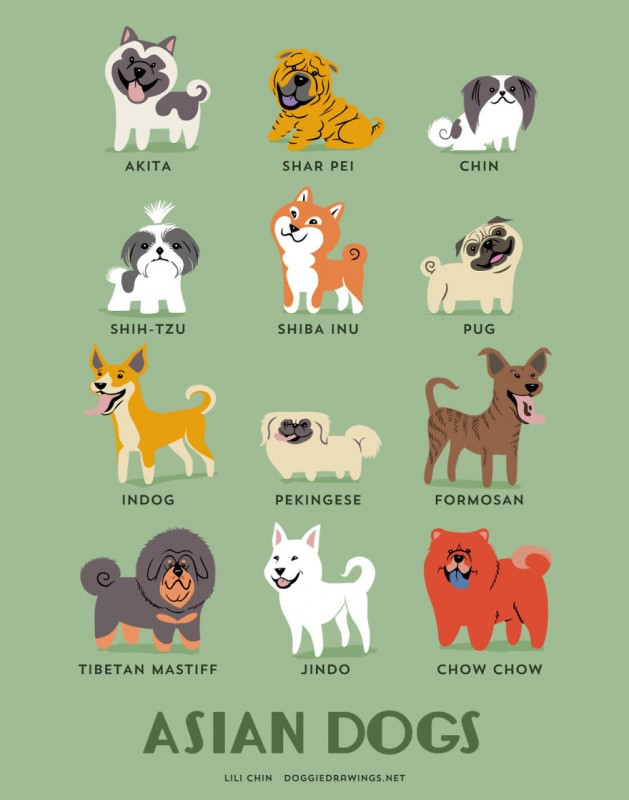 dogs-of-the-world-asia