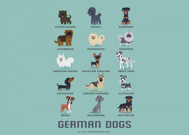 dogs-of-the-world-german