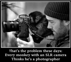 Every Monkey with an SLR