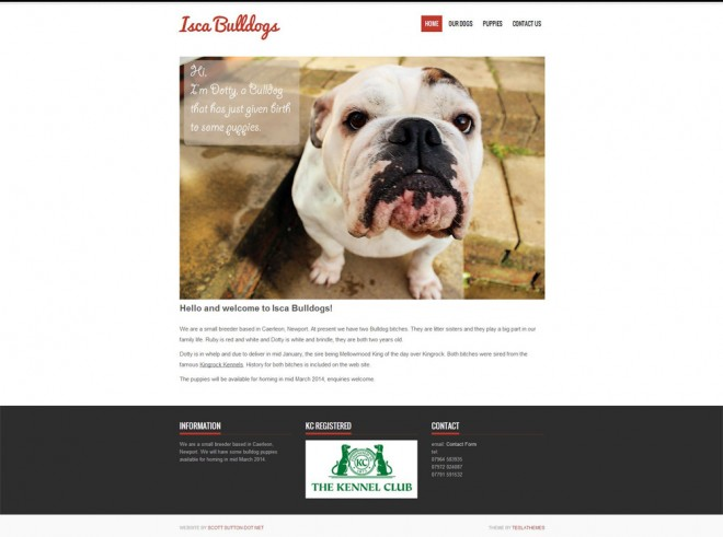 Isca Bulldogs Screenshot